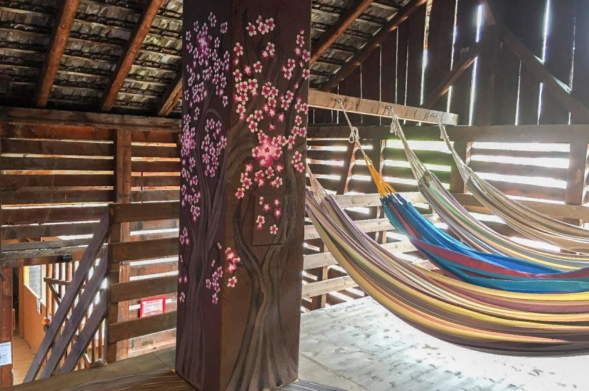 tree house hammock interlaken hostel