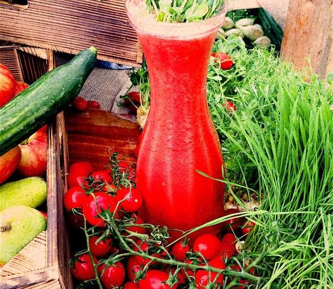 tomato juice_n